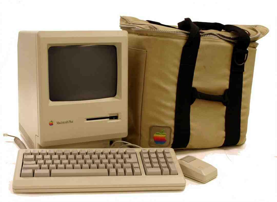 Comment récupérer un dossier remplacé par erreur sur Mac ?